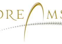 Logotipo Dreams Chile